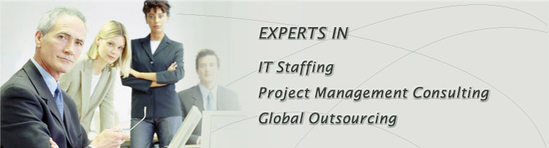 IMSI Experts in IT Staffing and Project Management Consulting